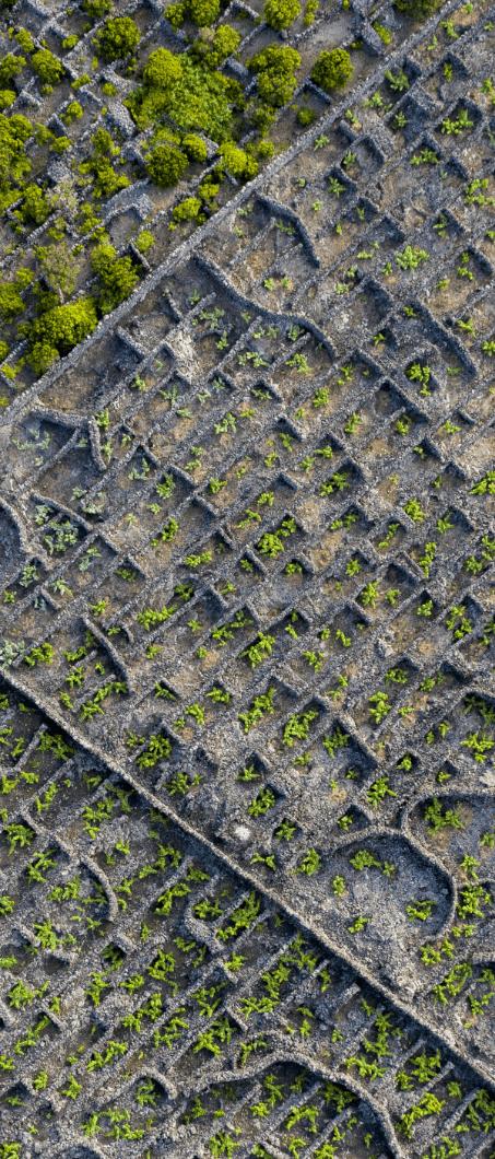Labirintos de Lava